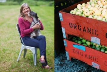 Organic Apples at Sea Cider Farm